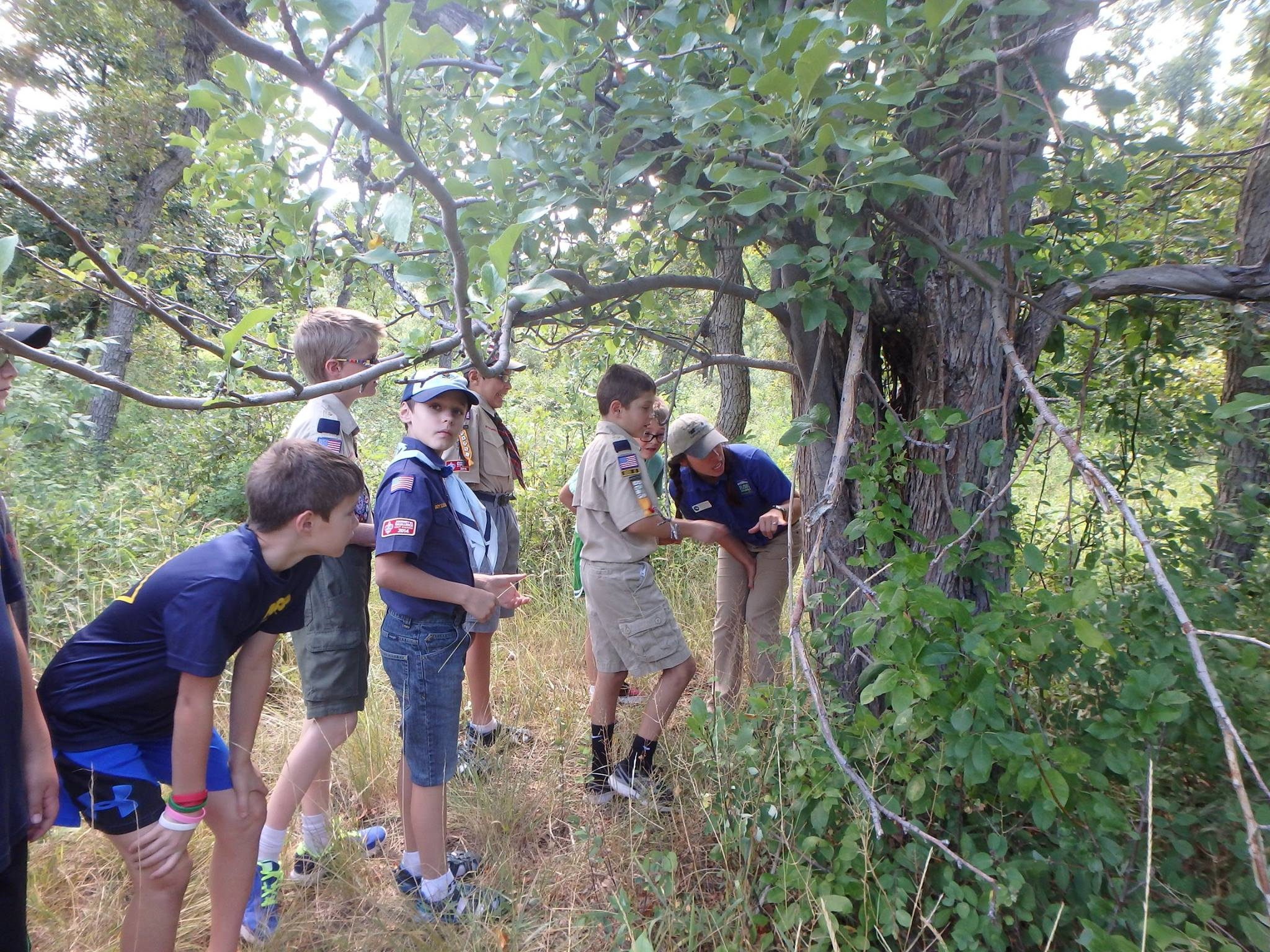 Boy-scouts-taking-a-closer-look-at-an-apple-tree-in-Bear-Creek-Park