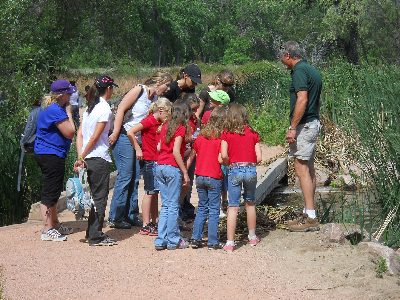 Students on a field trip examine a nature find by a bridge
