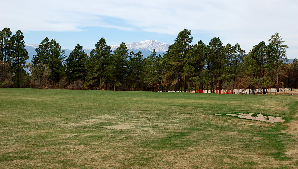 Black Forest playing field with Pikes Peak