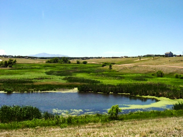 View from Palmer Divide Regional Trail