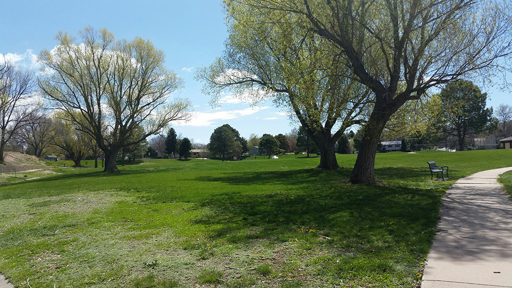 Widefield Community Park field and bench