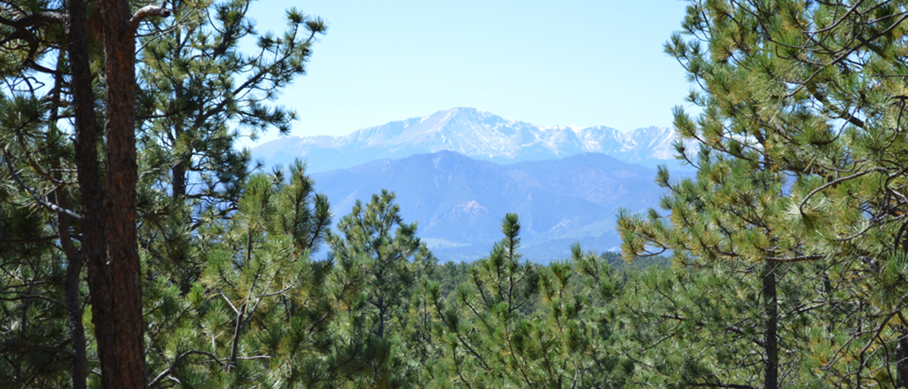 Pikes Peak from Fox Run Regional Park