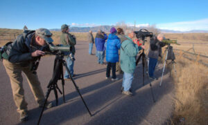 group of adults birding